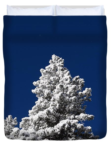 Frozen Tranquility Ute Pass Cos Co Duvet Cover