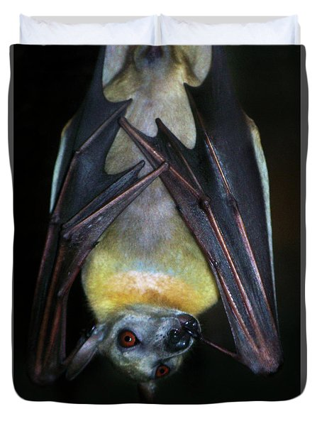 Duvet Cover featuring the photograph Fruit Bat by Anthony Jones