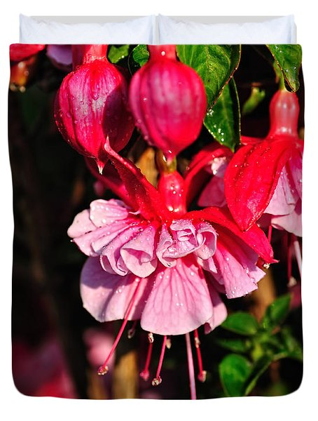 Fuchsias With Droplets Duvet Cover