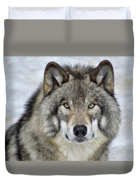 Duvet Cover featuring the photograph Full Attention  by Tony Beck
