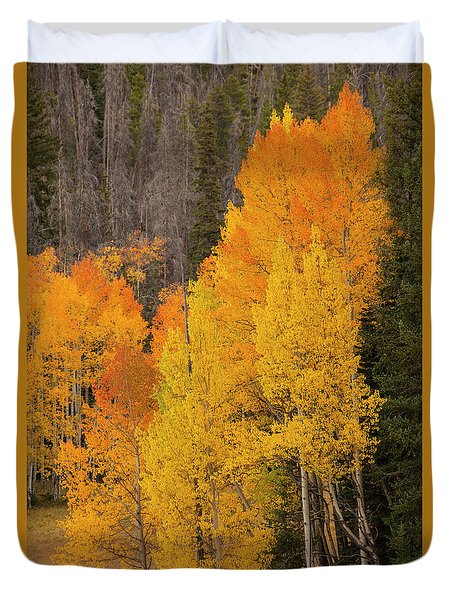 Fall  Color Duvet Cover