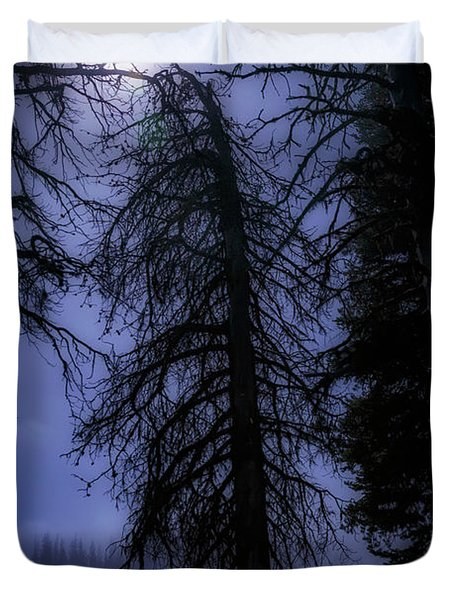 Full Moon In The Woods Duvet Cover