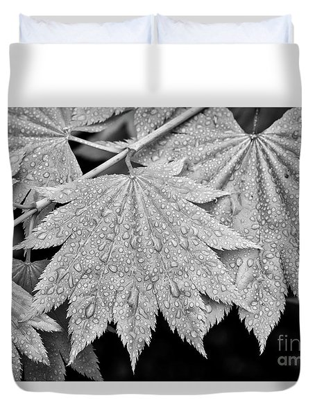 Full Moon Maple Leaf After A Spring Rain Duvet Cover