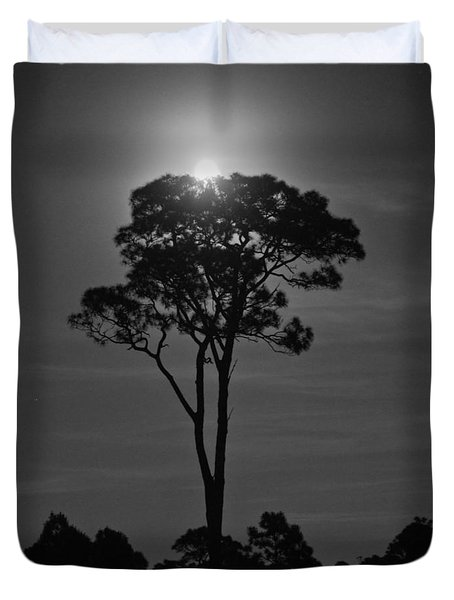 Full Moon Pearl  On Old Longleaf Pine Setting Duvet Cover