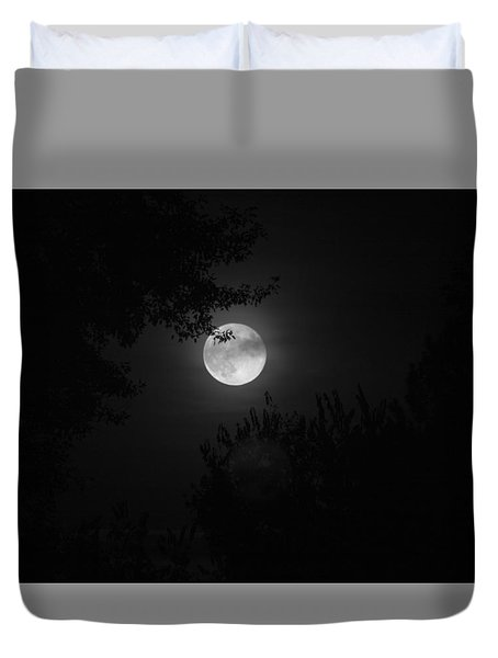 Full Moon With Branches Duvet Cover