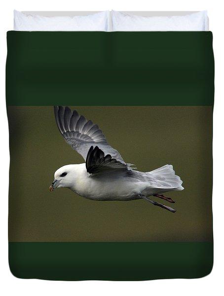 Fulmar In Flight Duvet Cover