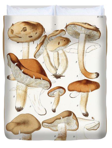 Fungi Duvet Cover by Jean-Baptiste Barla