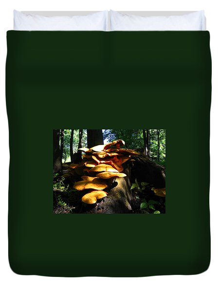 Duvet Cover featuring the photograph Fungus Colony 23 by Maciek Froncisz