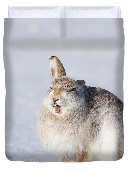 Funny Face - Mountain Hare - Scottish Highlands  #13 Duvet Cover