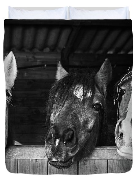 Funny Horses Duvet Cover