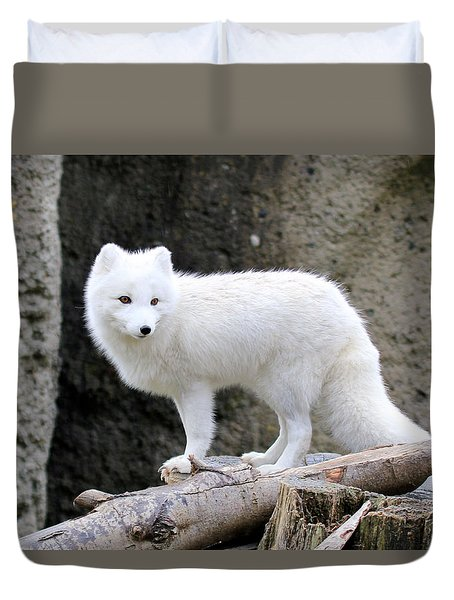 Furry Arctic Fox  Duvet Cover by Athena Mckinzie