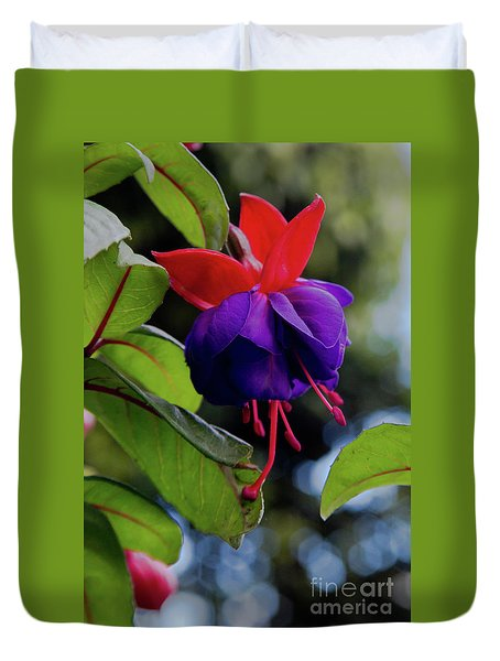Fuschia Duvet Cover