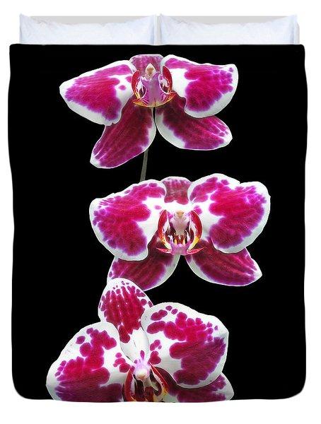 Fuschia Orchid Triplets Duvet Cover