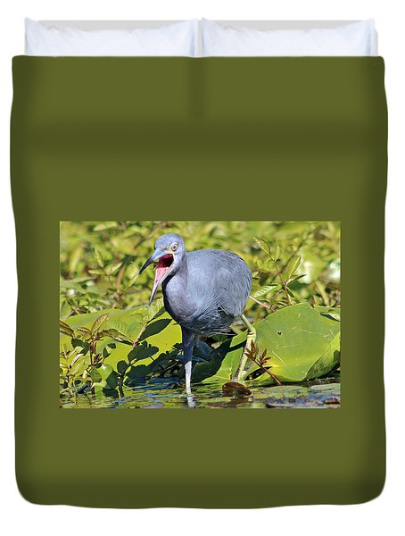 Fussy Little Blue Heron Duvet Cover