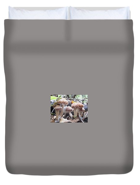 Duvet Cover featuring the photograph Fuzzy Fungi by Martha Ayotte