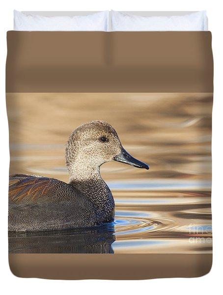 Gadwall In Morning Light Duvet Cover