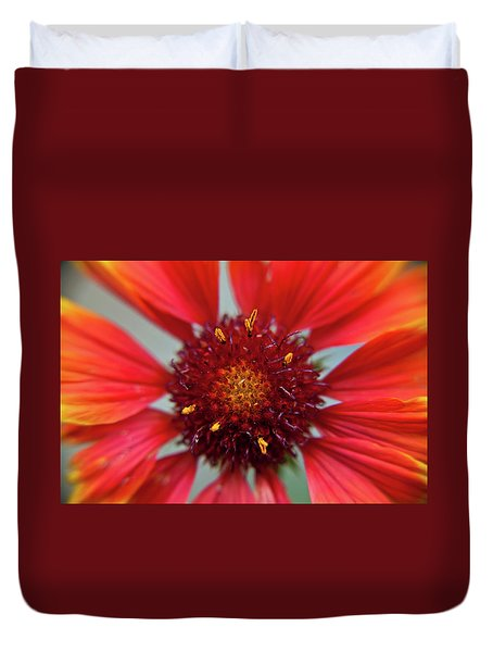 Duvet Cover featuring the photograph Gaillardia by Brenda Jacobs