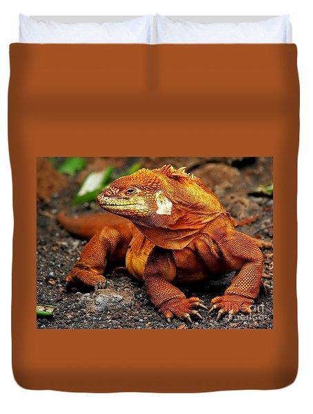 Galapagos Iguana Duvet Cover