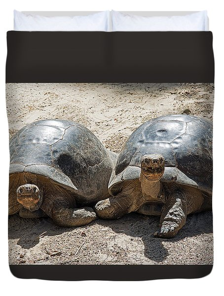 Galapagos Tortoise Couple Duvet Cover by Kenneth Albin