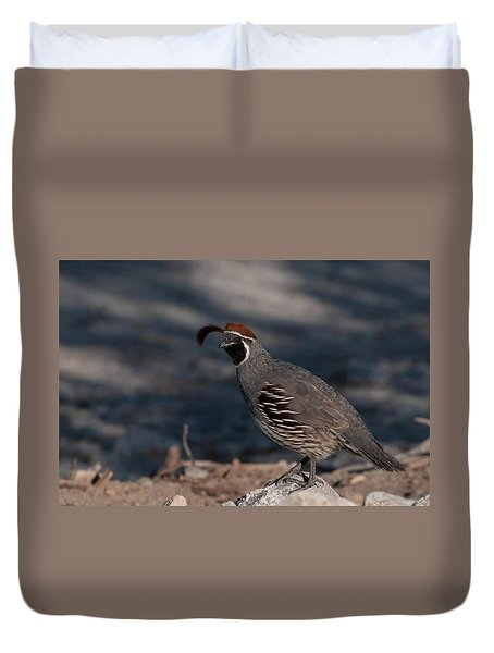 Gambel's Quail Duvet Cover by Martina Thompson