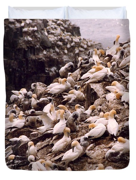 Duvet Cover featuring the photograph Gannet Cliffs by Mary Mikawoz