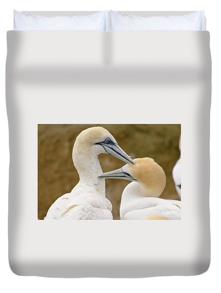 Duvet Cover featuring the photograph Gannet Pair 1 by Werner Padarin