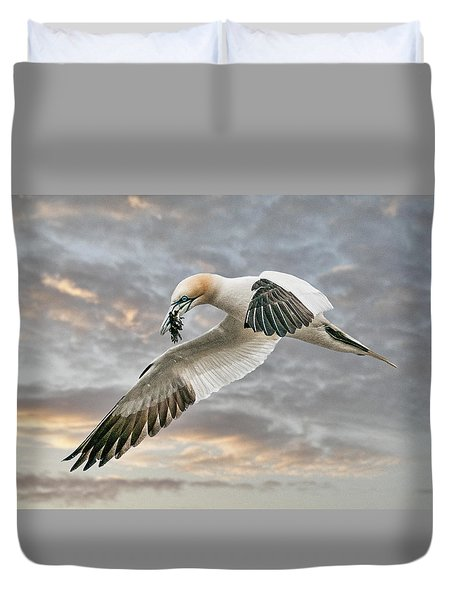 Duvet Cover featuring the photograph Gannet With Seaweed by Brian Tarr
