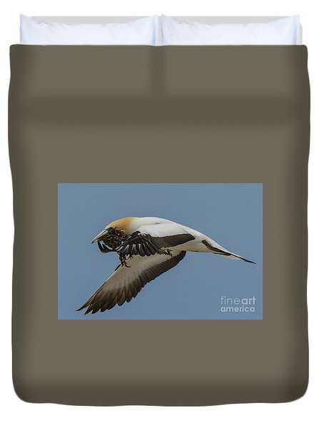 Duvet Cover featuring the photograph Gannets 1 by Werner Padarin