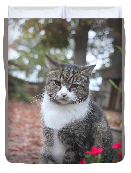 Garden Kitty 6 Duvet Cover by Wendy Coulson