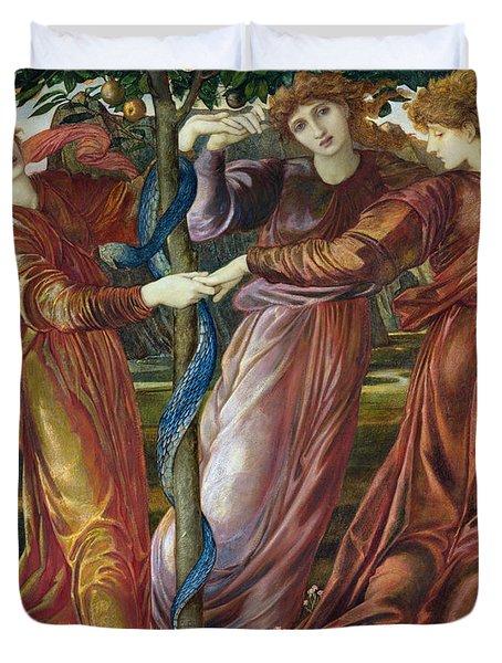 Garden Of The Hesperides Duvet Cover by Sir Edward Burne Jones