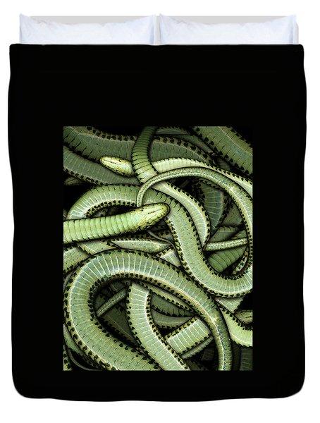 Garter Snakes Pattern Duvet Cover by James Larkin