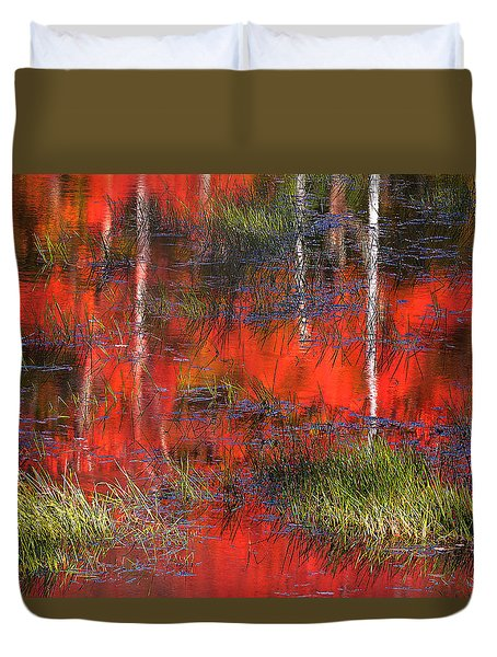 Gatineau Marsh Fall Colors Duvet Cover