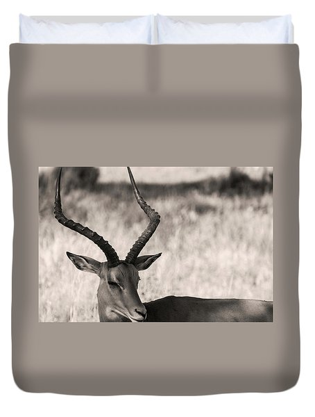 Duvet Cover featuring the photograph Gazella by Stefano Buonamici