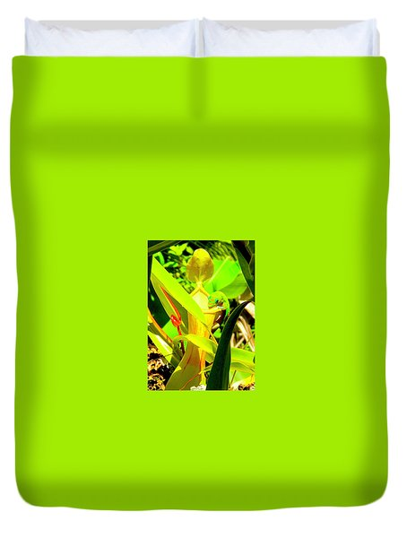 Gecko On Mosquito Catcher Orchid Duvet Cover