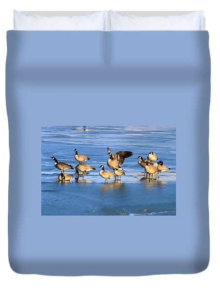Geese On Ice Duvet Cover