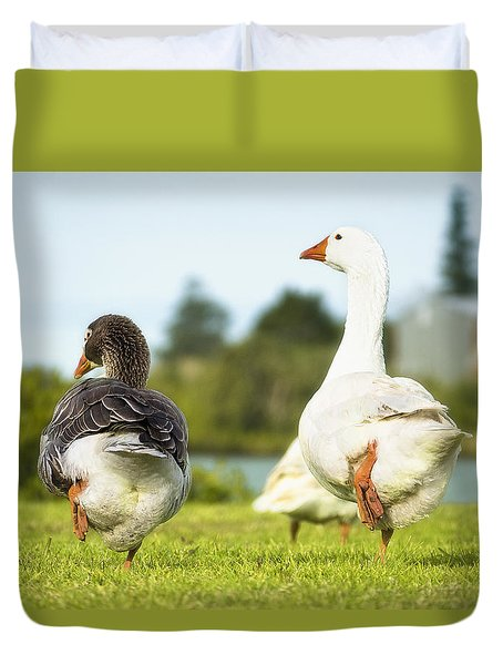 Duvet Cover featuring the photograph Geese Walk In The Park 01 by Kevin Chippindall