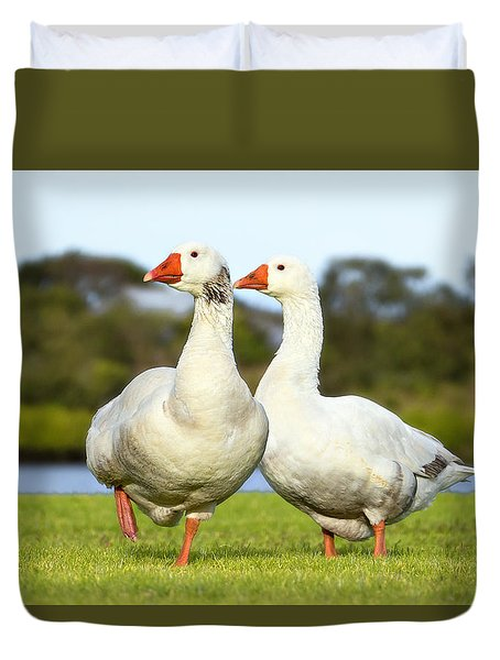 Duvet Cover featuring the photograph Geese Walk In The Park 02 by Kevin Chippindall