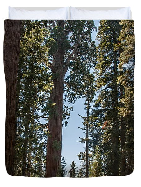 General Grant Tree Kings Canyon National Park Duvet Cover