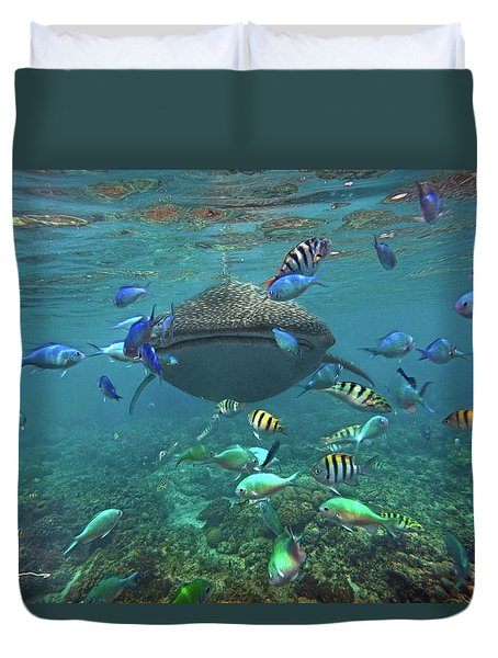 Gentle Giant Duvet Cover by Tim Fitzharris