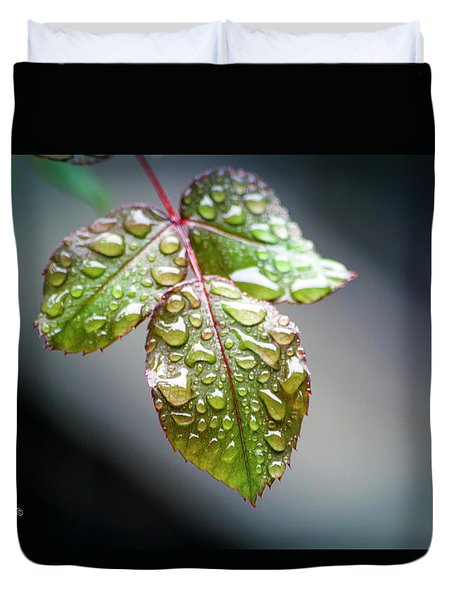 Gentle Rain Drops Duvet Cover