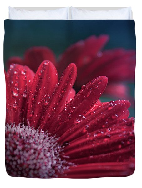 Duvet Cover featuring the photograph Gerbera Red Jewel by Sharon Mau