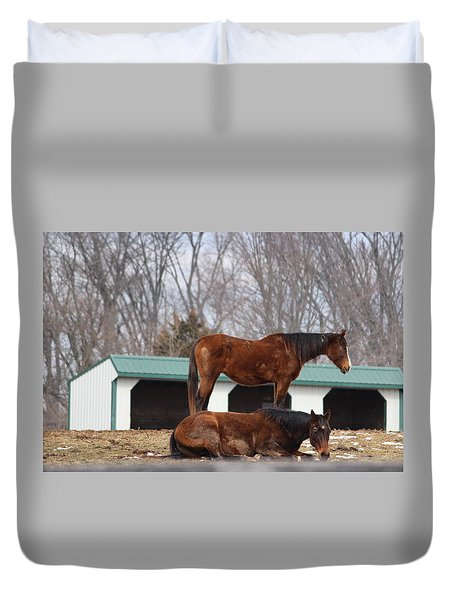 Get Off My Back Duvet Cover by Jewels Blake Hamrick