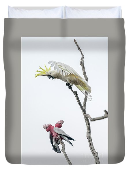 Get Off My Perch Duvet Cover