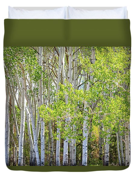 Getting Lost In The Wilderness Duvet Cover by James BO Insogna