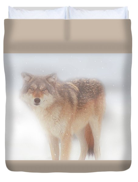 Ghost Wolf Duvet Cover by Greg Slocum