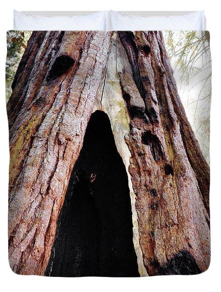 Giant Forest Giant Sequoia Duvet Cover
