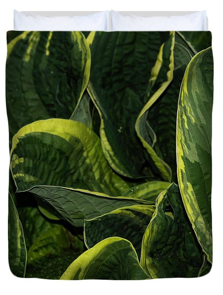 Giant Hosta Closeup Duvet Cover