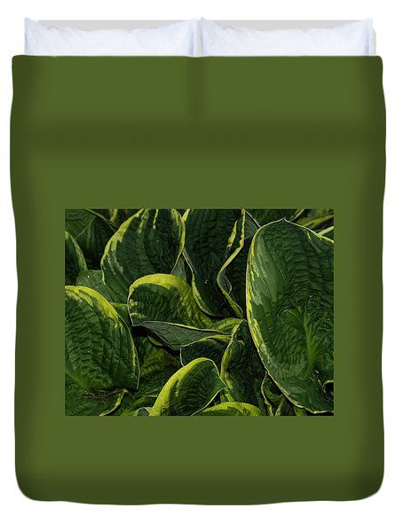 Giant Hosta Closeup Duvet Cover