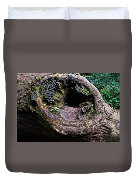Duvet Cover featuring the photograph Giant Knot In Tree by Scott Lyons