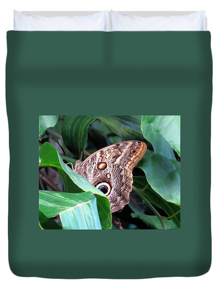 Giant Owl Butterfly Duvet Cover